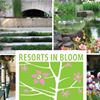 Resorts in Bloom - A Garden Tour for Charity