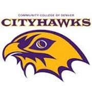 Swoop CityHawk