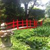Japanese Gardens And National Stud