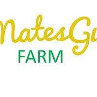 Mates Gully Farm