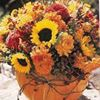 Citti's Florist