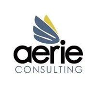 Aerie Consulting LLC