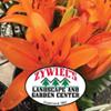 Zywiec's Landscape & Garden Center