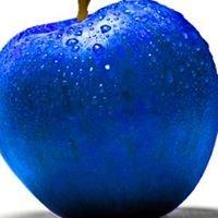 Blue Apple Studios Ltd
