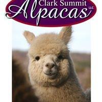 Clark Summit Alpacas, LLC