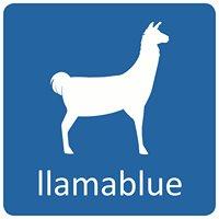 Llamablue Website Design and Hosting