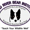 Wind River Bear Institute