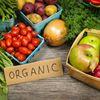 Ottawa Organic Farmers Market