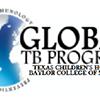 The Global Tuberculosis Program