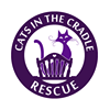 Cats in the Cradle Rescue NYC
