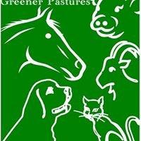 Greener Pastures No-Kill Animal Rescue