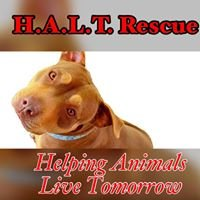 H.A.L.T. Dog Rescue (Helping Animals Live Tomorrow)