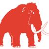 Mammoth Seattle