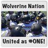 Wolverine Youth Football & Cheer - WYFC