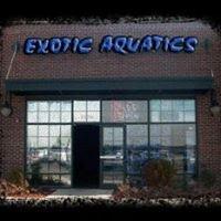 Exotic Aquatics
