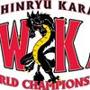 Maine Isshinryu Karate Academies (M.I.K.A.)