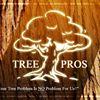 ASAP Tree Pros Inc. Tree & Landscape Company