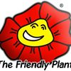 The Friendly Plant - Landscaping and Garden Design