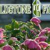 Fieldstone Farms Homeowners' Association