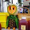 Wednesday Green Market