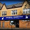 Animal Clinic and Hospital of Jersey City