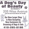 A Dog's Day of Beauty