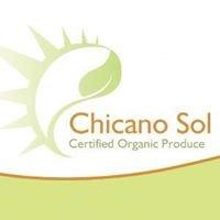 Chicano Sol