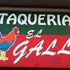 El Gallo Taqueria thumb