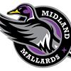 Midland Mallards Lacrosse