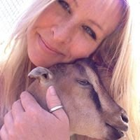 Westside Goat Girl LLC - Goat Rental