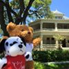 Austin Junior Forum's Teddy Bear Program