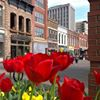 Historic Market Square, Knoxville