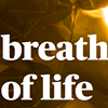 Breath of Life Yukon Wellness collective