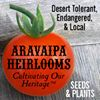 Aravaipa Heirlooms