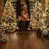 Historical Christmas Barn