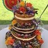 Happy Occasions Cakes