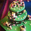 Emazing Cake Creations