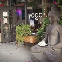 Peace Yoga Gallery