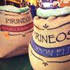 Los Pirineos Coffee Farm