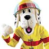 City of Poplar Bluff Fire Department