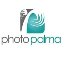 Photo Palma - Central Illinois Photographer