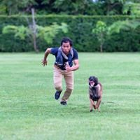 Malinois Club of Thailand