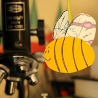 The Science Bee