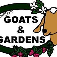 Miller's Goats & Gardens