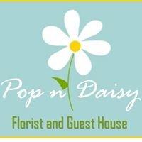 Pop a Daisy Florist - Guesthouse