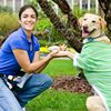 Heather Papoulis Dog Training