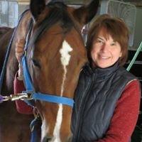 Superior Equine Health & Nutrition Inc.