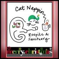 Cat Nappin Respite & Sanctuary