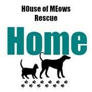 HOME Rescue