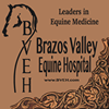 Brazos Valley Equine Hospitals